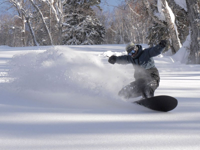 Powder Surfing - splitboard-camps.at