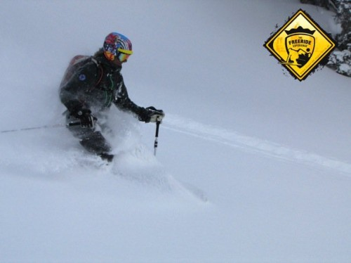 The Freeride Experience (1)