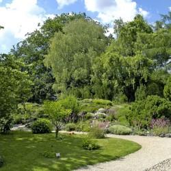 Botanischer-Garten01