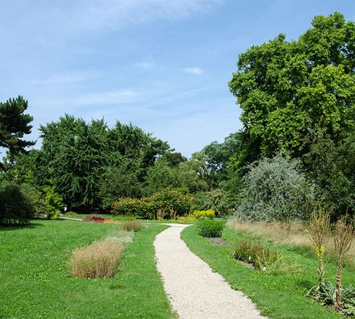 Botanischer-Garten02